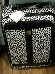 Luggage-225x300