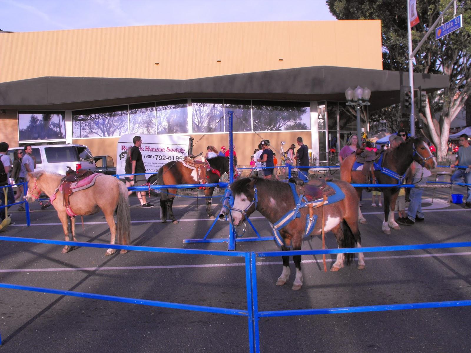 Pony circus